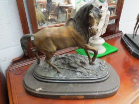 A cold cast bronze model of a Stallion by P.