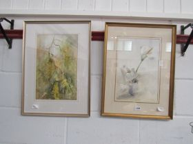 """A pair of watercolours of """"Lily"""" and """"Laburnum"""", signed M."""