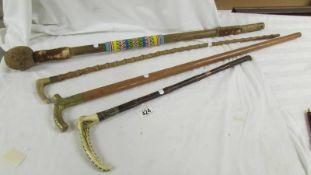 2 walking sticks. a riding crop and an Aboriginal walking stick.