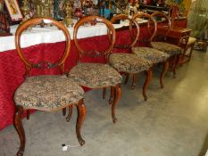 Five Victorian mahogany cabriole leg balloon back chairs.