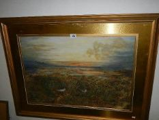 An excellent framed and glazed watercolour moorland scene with birds nesting and in flight,