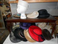 A quantity hats (heads not included)