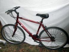 An Apollo CX10 bicycle