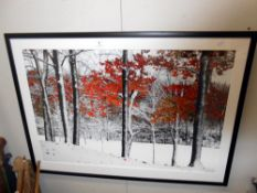 A large Framed and glazed print of trees titled 'Snowfall' by Burney Lieberman 105cm x 75cm collect