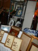 Approximately 20 good photograph frames.