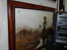 A large framed and glazed woodland print.