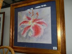 A framed and glazed study of an orchid signed Joanna Woods.