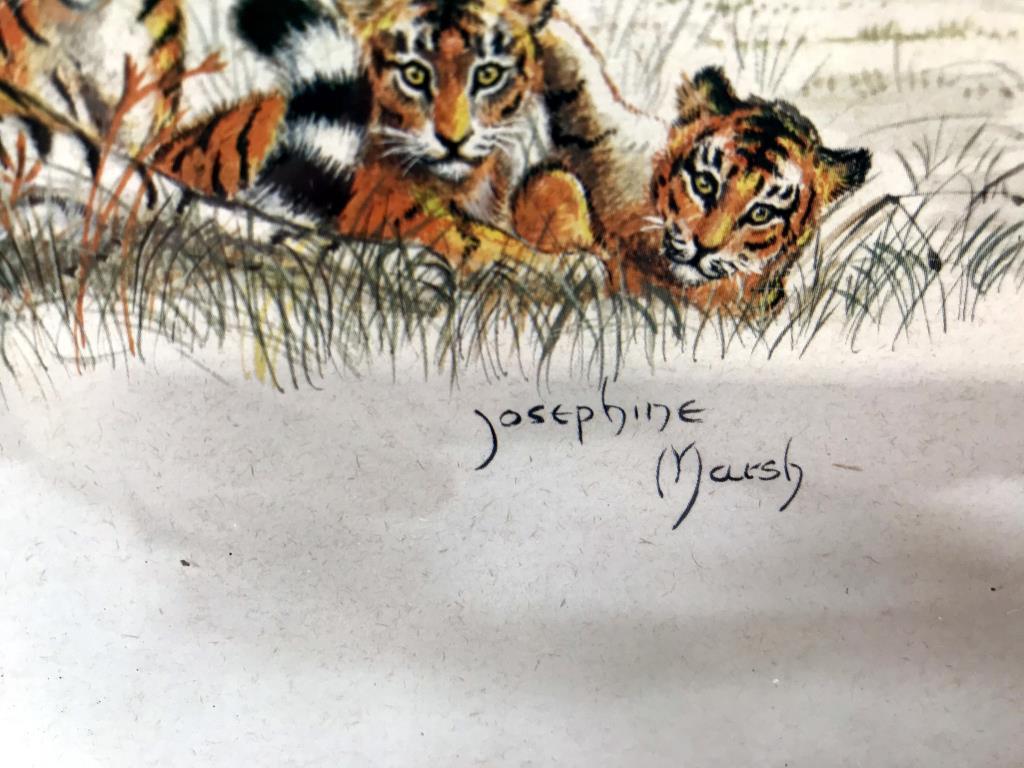 3 framed prints of big cats, tiger, - Image 7 of 8