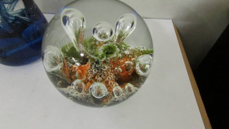 Four Caithness glass paperweights. - Image 2 of 5