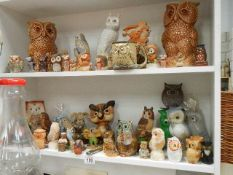 Two shelves of assorted owl figures,