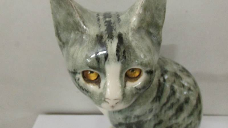 A signed pottery cat with glass eyes. - Image 2 of 3