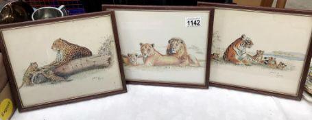 3 framed prints of big cats, tiger,