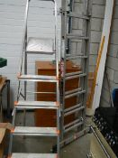 An aluminium step ladder and one other.