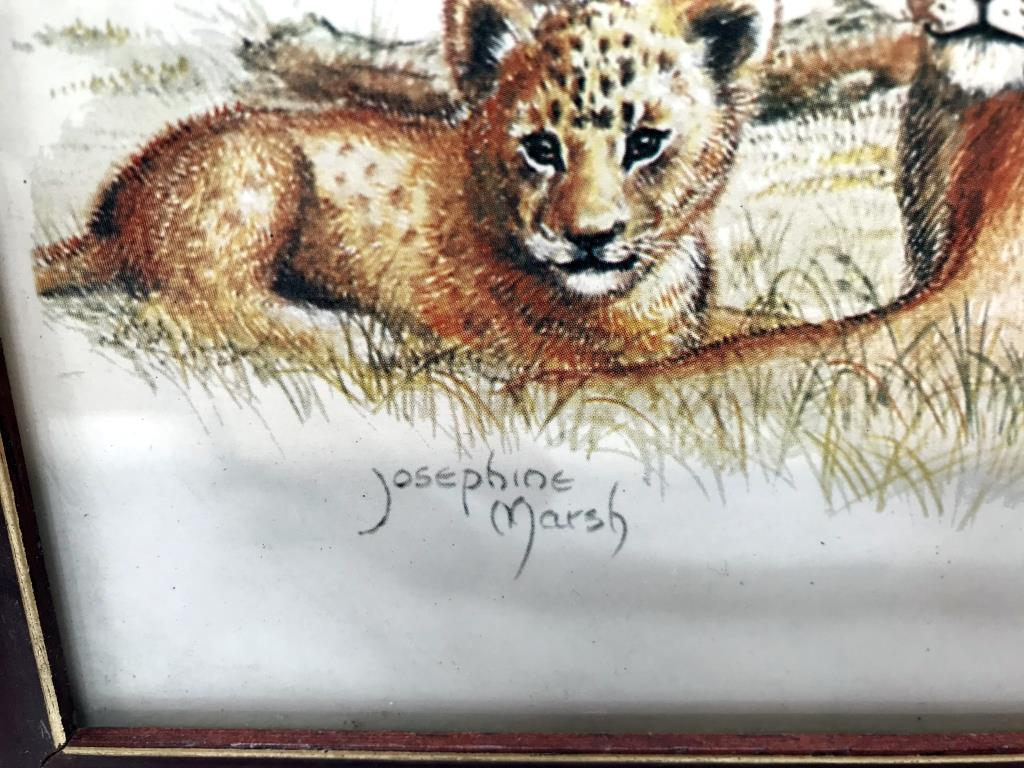 3 framed prints of big cats, tiger, - Image 5 of 8