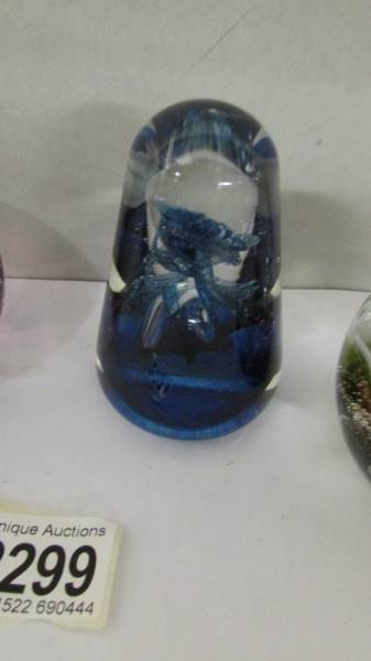 Four Caithness glass paperweights. - Image 3 of 5