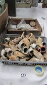 A good lot of clay pipe bowls and other fossils etc.