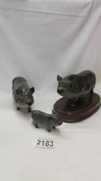 Two Royal Doulton pigs and a Royal Doulton piglet.