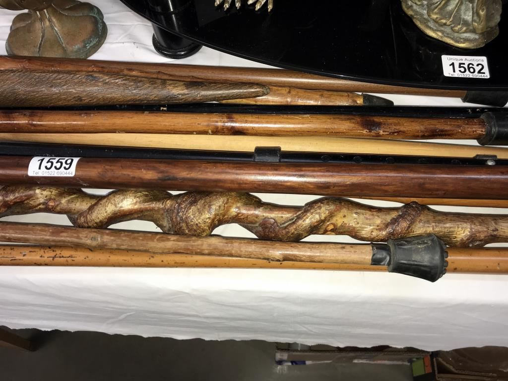 A good selection of walking sticks - Image 3 of 4