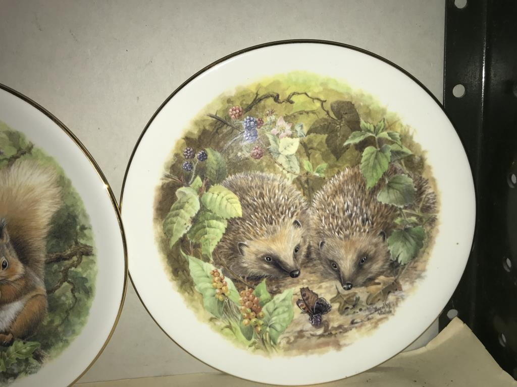 A selection of collectors cabinet plates including aircraft etc. - Image 10 of 12