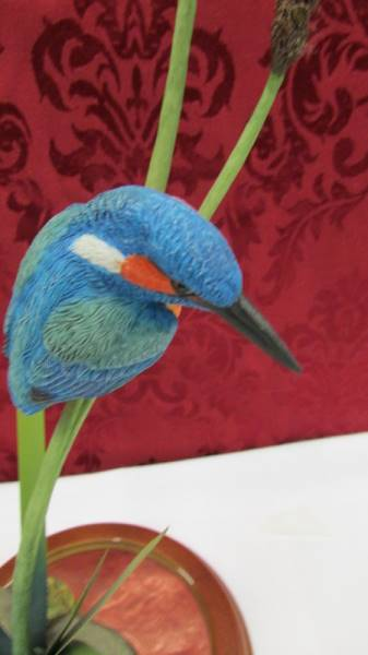 Border Fine Arts Reflections - Kingfisher - boxed. (This lot is collect only). - Image 2 of 3