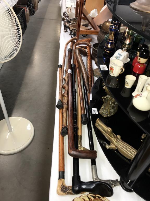 A good selection of walking sticks