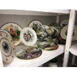 A quantity of cabinet collectors plates depicting birds including Royal Albert & Wedgwood etc.
