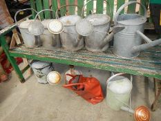 Seven galvanised watering cans etc.