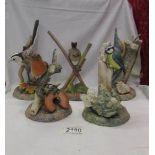 Five Malvern porcelain bird figures including Robin, Blue Tit, Wren etc.