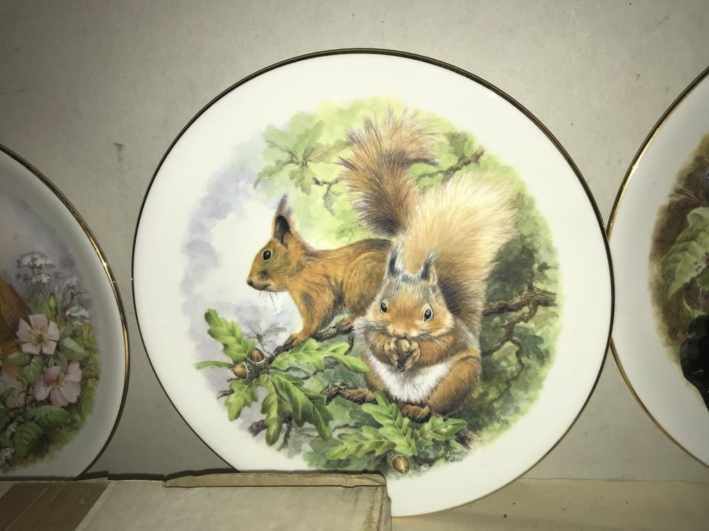 A selection of collectors cabinet plates including aircraft etc. - Image 9 of 12