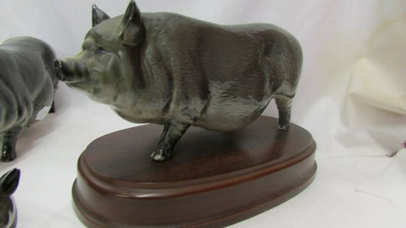 Two Royal Doulton pigs and a Royal Doulton piglet. - Image 2 of 4