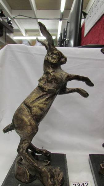 A pair of Bronzed spelter boxing hares on marble bases. - Image 2 of 3