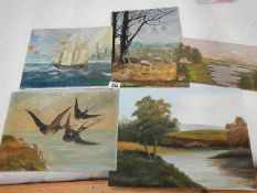 Five paintings on board, Swallows, Sailing ship etc., none signed.