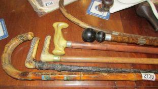 Six old walking stick.