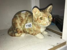 A signed Winstanley cat with glass eyes, size 5, no chips/cracks,