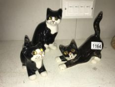 3 signed Winstanley black & white kittens with glass eyes, sizes 2, 2 & 1, no chips/cracks,