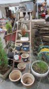 A mixed lot of planters, garden ornaments etc.