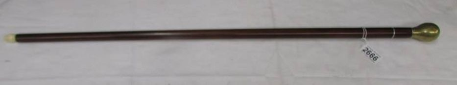 A superb quality antique oriental walking stick with brass knop handle having inset 'insect' and