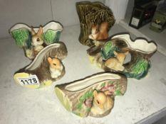 5 Hornsea Fauna including rabbit & squirrels
