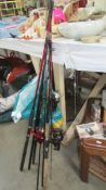 A quantity of fishing rods and reels.