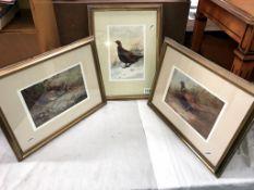 3 gilt framed prints of Game birds (32cm x 42cm)