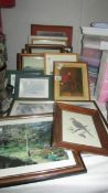 A mixed lot of assorted framed pictures.