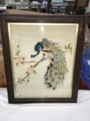A framed & glazed embroidered picture of a Peacock.
