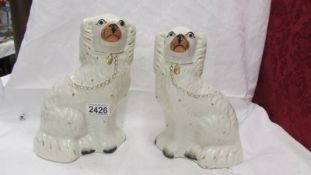 A pair of Staffordshire spaniels.