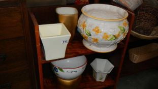 Two shelves of plant pots (collect only)