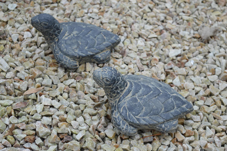 Set of six composition tortoises - Image 2 of 2