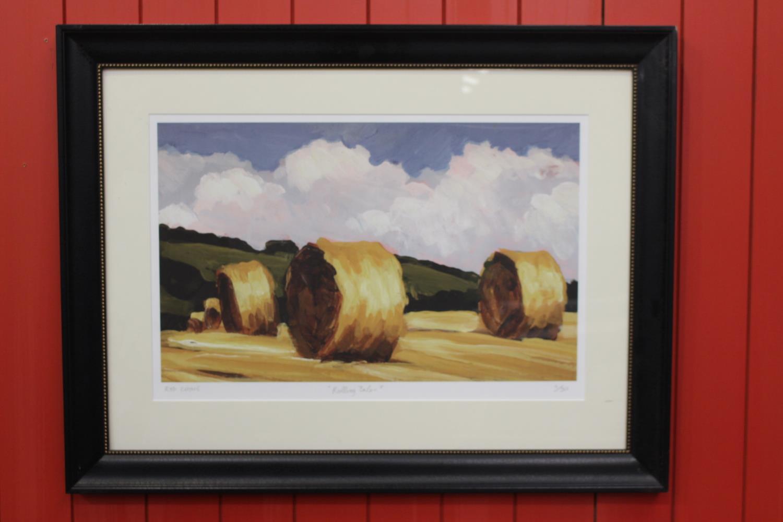 Framed Rod Coyne print