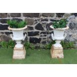 Pair of early 19th C. cast iron garden urns