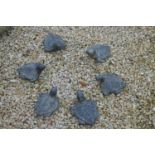 Set of six composition tortoises