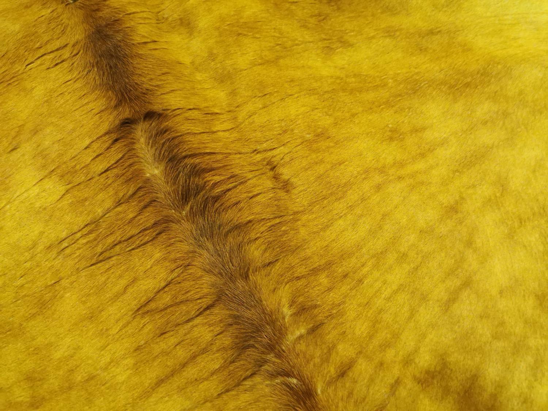 Cow skin rug - Image 2 of 5