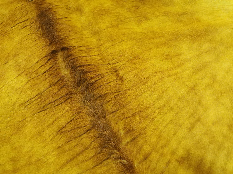 Cow skin rug - Image 3 of 5